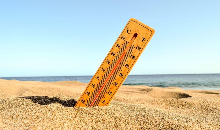 sobrevivir al calor